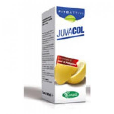 JuvaCol_4fe06a12285ff