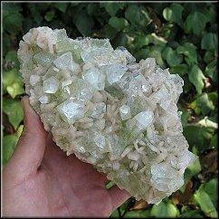 zeolite minerale detossicante