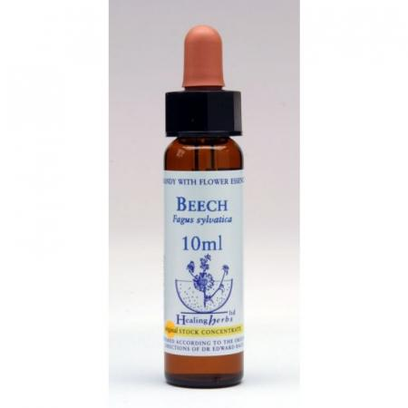 Fiori di Bach Beech, confezione da 10 ml con contagocce
