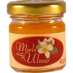 Miele di Ulmo originale dal Cile e totalmente naturale