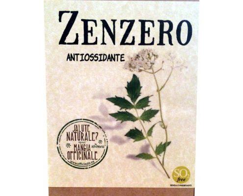 zenzero antibiotico naturale