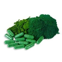 alghe salute