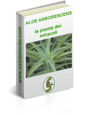 ebook aloe arborescens la pianta dei miracoli
