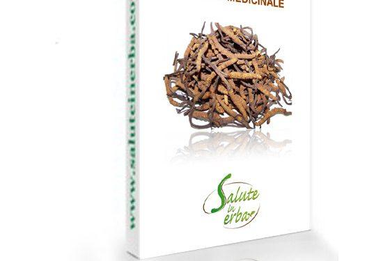 cordyceps sinensis ebook