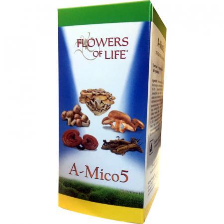 a-mico5 funghi medicinali