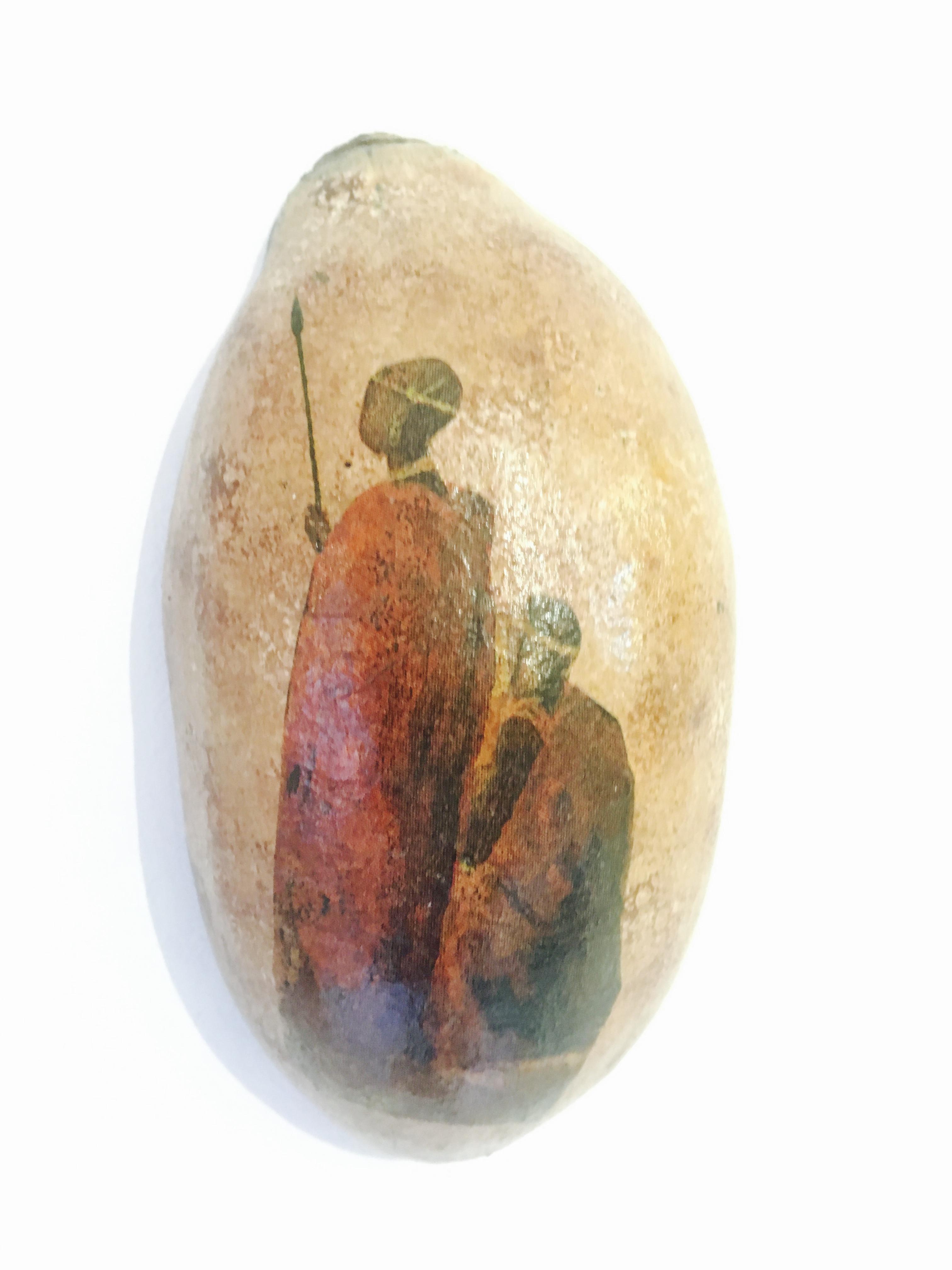 guscio di frutto di baobab design decoupage