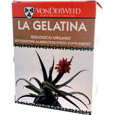 gelatina di aloe arborescens biologica