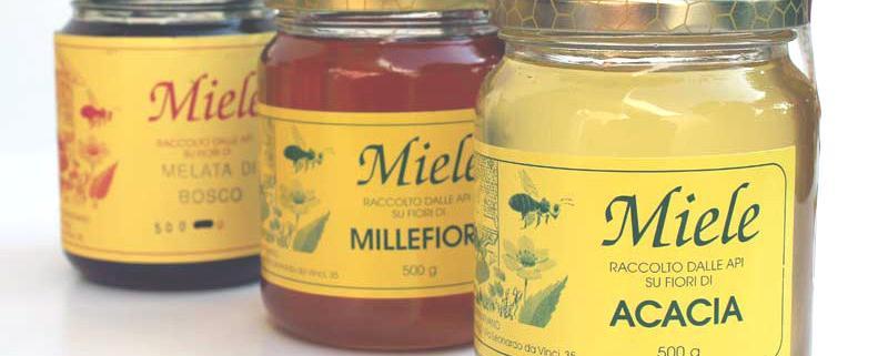 Funghi Artigianali Italiani su Salute in Erba Shopping online