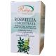 Boswellia concentrata in 60 capsule vegetali