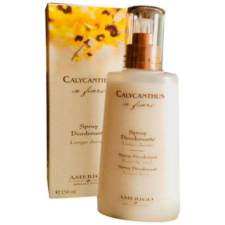 calycanthus Amerigo spray deodorante