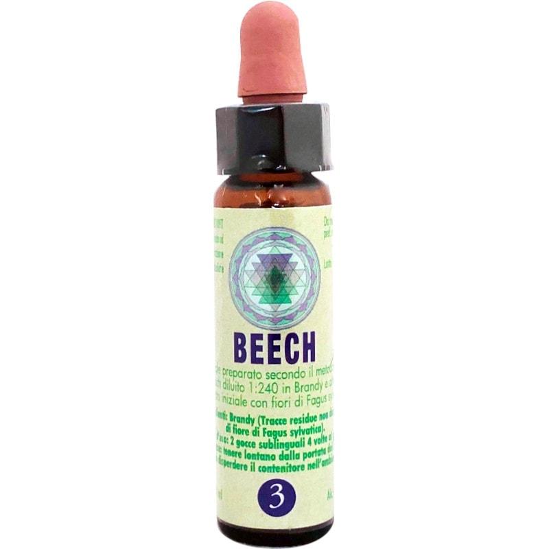 Beech fiori di Bach