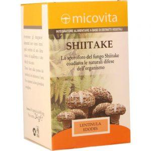 Shiitake Opercoli
