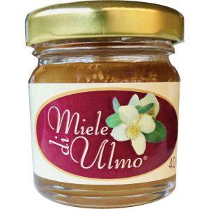 Miele di Ulmo - 40 gr