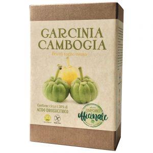 Garcinia Cambogia frutti taglio tisana