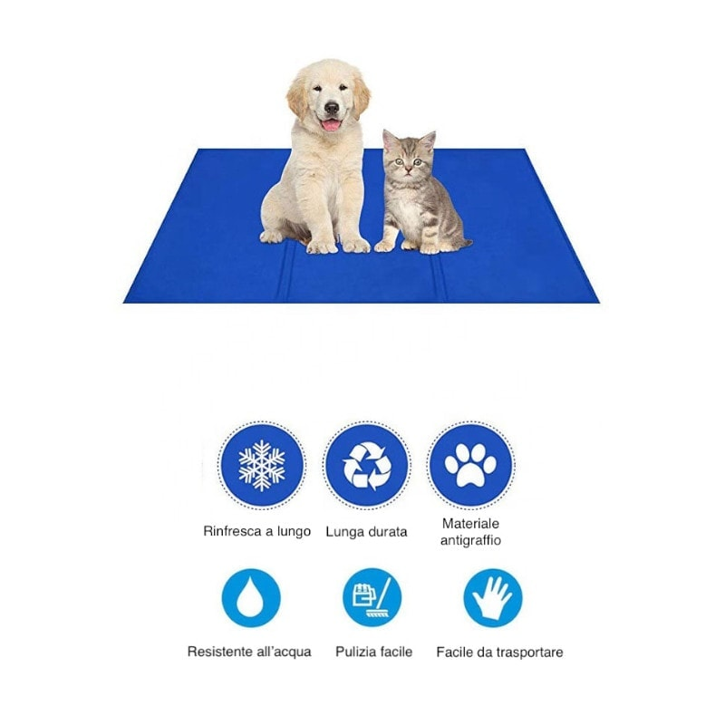 Cane e gatto al fresco con il materassino gel rinfrescante