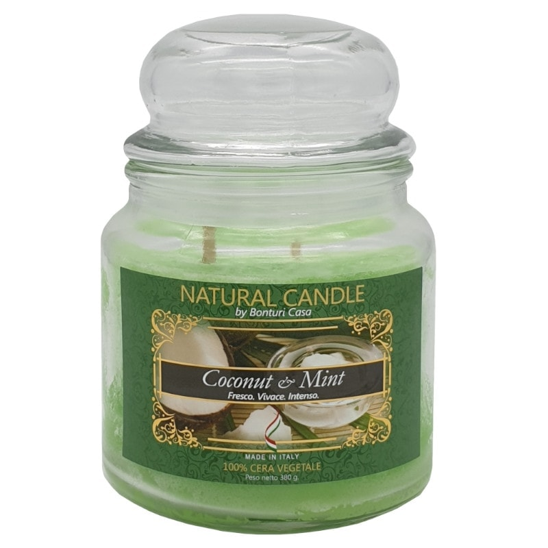Nature Candle aroma Coconut & Milk 380 grammi