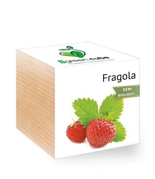 Ecocube Fragola iGreen gadgets
