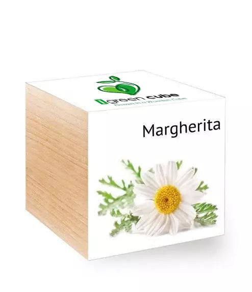 Ecocube Margherita iGreen gadgets