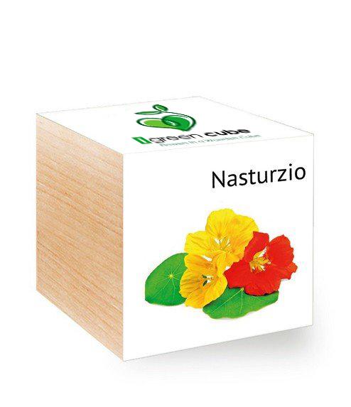 Ecocube Nasturzio iGreen gadgets