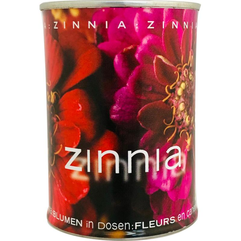 Microgiardini Zinnia iGreen gadgets